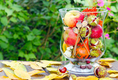 Autumn decoration. On the garden table Royalty Free Stock Photo