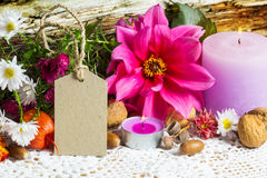 Autumn decoration, greeting card Stock Photo