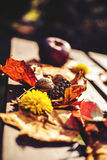 Autumn decoration. With leaves and apple Stock Photo