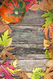 Autumn decoration Stock Image