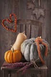 Autumn decoration Stock Images