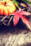 Autumn decoration with pumpkin and colorful leaves Royalty Free Stock Photography