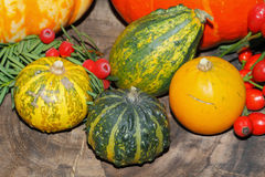 Autumn decoration, pumpkin, gourd, rose hips, berries Royalty Free Stock Photos