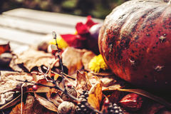 Autumn decoration. With pumpkin and leaves Royalty Free Stock Image