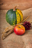 Autumn decoration Royalty Free Stock Photography