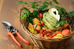 Autumn decoration of rose hips. floristry. Stock Images