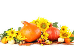 Autumn decoration with sunflowers and pumpkins Royalty Free Stock Photography