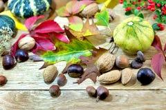 Autumn decoration on table - harvest Royalty Free Stock Photos