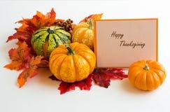 Autumn decoration. On the white background Stock Photos