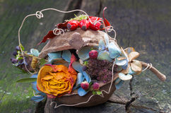 Autumn decoration on wood Royalty Free Stock Photos