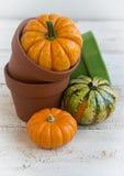 Autumn decoration. On wooden background Royalty Free Stock Photo