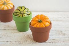 Autumn decoration. On the wooden background Royalty Free Stock Photography