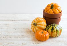 Autumn decoration. On the wooden background Stock Image