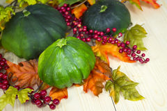 Autumn decoration of zucchini Stock Images