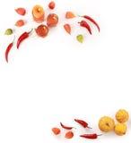 Autumn decorations Stock Photos