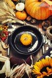 Autumn Decorations fotografering för bildbyråer