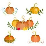 Autumn Decorations Fotografia Stock