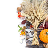 Autumn decorations Royalty Free Stock Photography