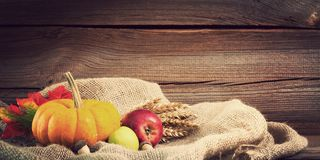 Autumnal background before wooden board Stock Image