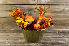 Autumn Decorations on Weathered Wood Stock Image