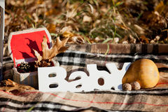 Autumn decorative composition with word `baby`. Stock Image