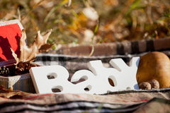 Autumn decorative composition with word `baby`. Royalty Free Stock Photo