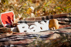 Autumn decorative composition with word `baby`. Royalty Free Stock Images