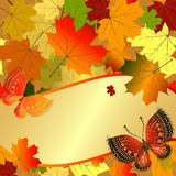 Autumn decorative floral frame with colorful translucent maple l. Eaves and butterflies and gold label, vector eps10 Royalty Free Stock Photography