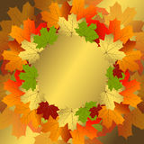 Autumn decorative floral frame. With colorful translucent maple leaves (vector eps10 Royalty Free Stock Photo