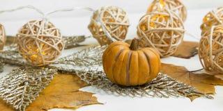Autumn decorative pumpkin Royalty Free Stock Image