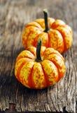 Autumn decorative pumpkins Stock Photo