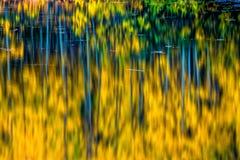 Autumn Deep Royaltyfri Bild
