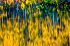 Autumn Deep Royalty Free Stock Image