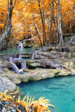 Autumn Deep forest waterfall Stock Images