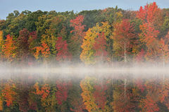 Autumn Deep Lake with Fog Stock Photography