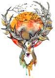 Autumn. Deer with beautiful horns on nature Stock Photos