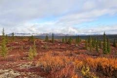 Autumn on Denali Hwy, Alaska Stock Image