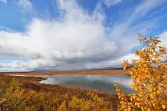 Autumn on Denali Hwy, Alaska Stock Photography