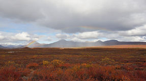 Autumn on Denali Hwy, Alaska Royalty Free Stock Photos