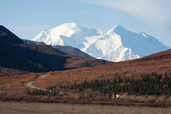 Autumn in Denali & Mount McKinley Royalty Free Stock Images