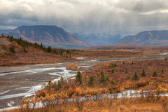 Autumn in Denali national Park Stock Photography