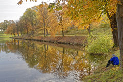 Autumn in denmark Stock Photography