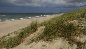 Autumn desert beach on the bank of the Baltic Sea near Curonian Spit (Russia). Stock Photo