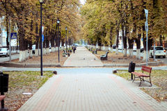 Autumn deserted park in the city center. Paths, benches, autumn, melancholy, sadness, ridiculous feelings. City Park. City alley. Evening in the city empty Stock Images