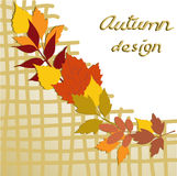 Autumn design Royalty Free Stock Photography