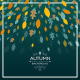 Autumn Design with Autumnal Leaves Royalty Free Stock Photography