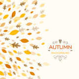 Autumn Design with Autumnal Leaves. Illustration of a Fall Background Design with Autumnal Leaves Stock Images