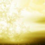 Autumn design background. Beautiful autumn design background and card Stock Photo