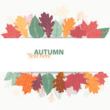 Autumn design with colorful bright leaves. Vector illustration in eps8 format Stock Image