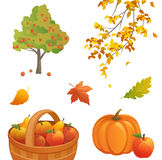 Autumn design elements Stock Image